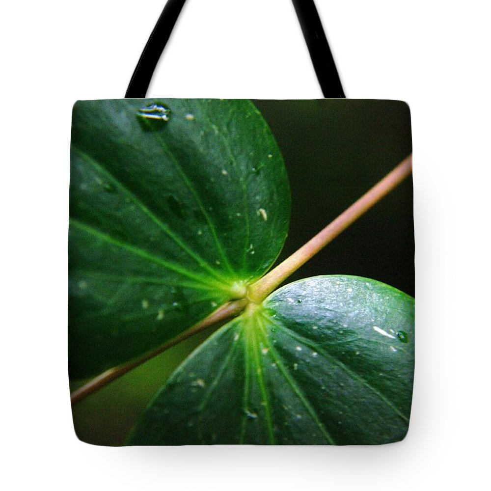 Leaves Tote Bag featuring the photograph The Magical by Jeff Swan