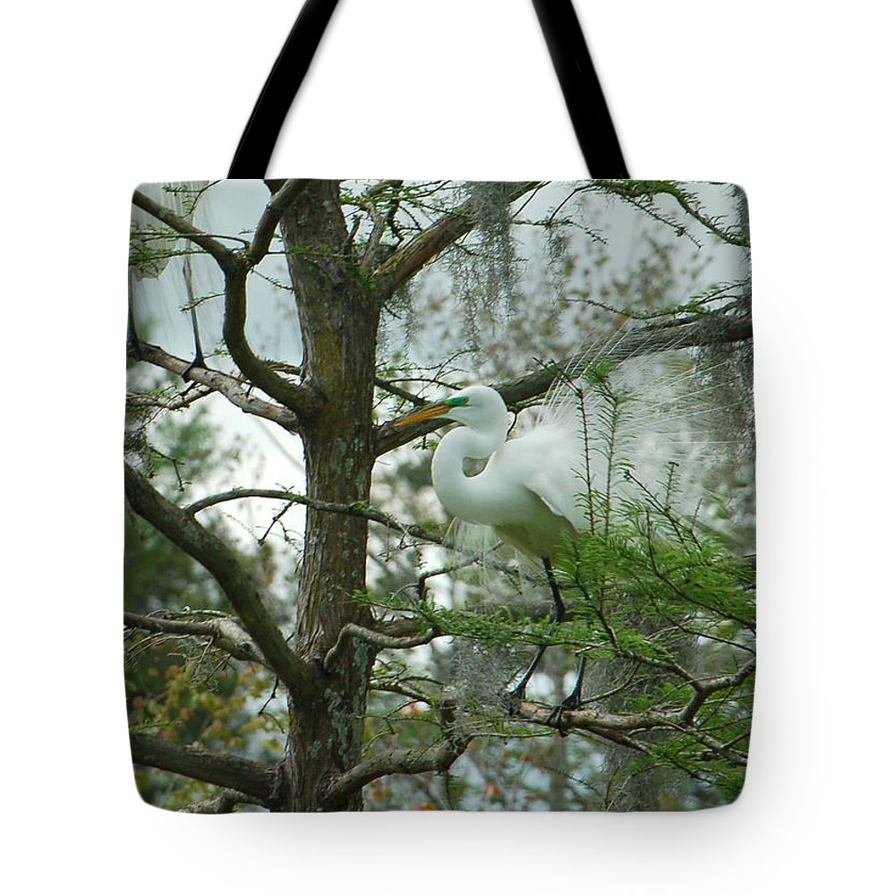 Egret Tote Bag featuring the photograph The Mating Dance by Suzanne Gaff