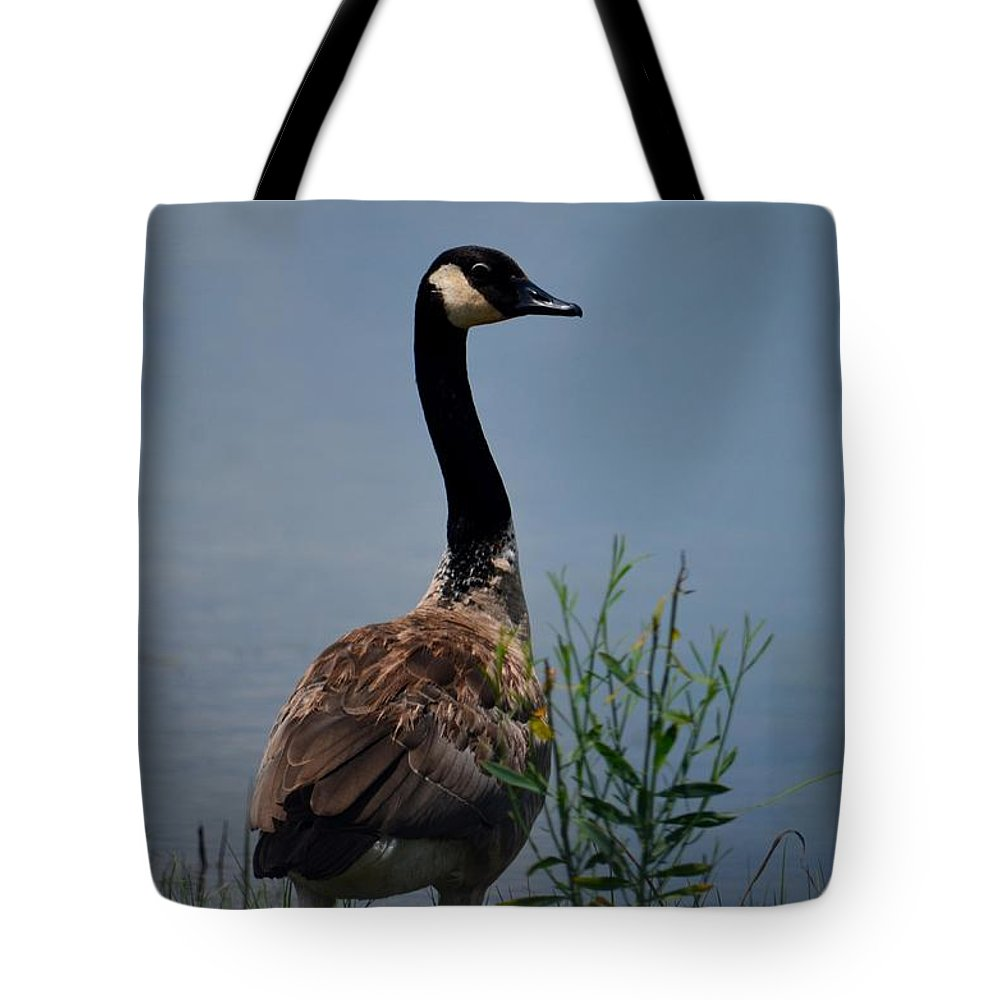 The Noble One Tote Bag featuring the photograph The Noble One by Maria Urso