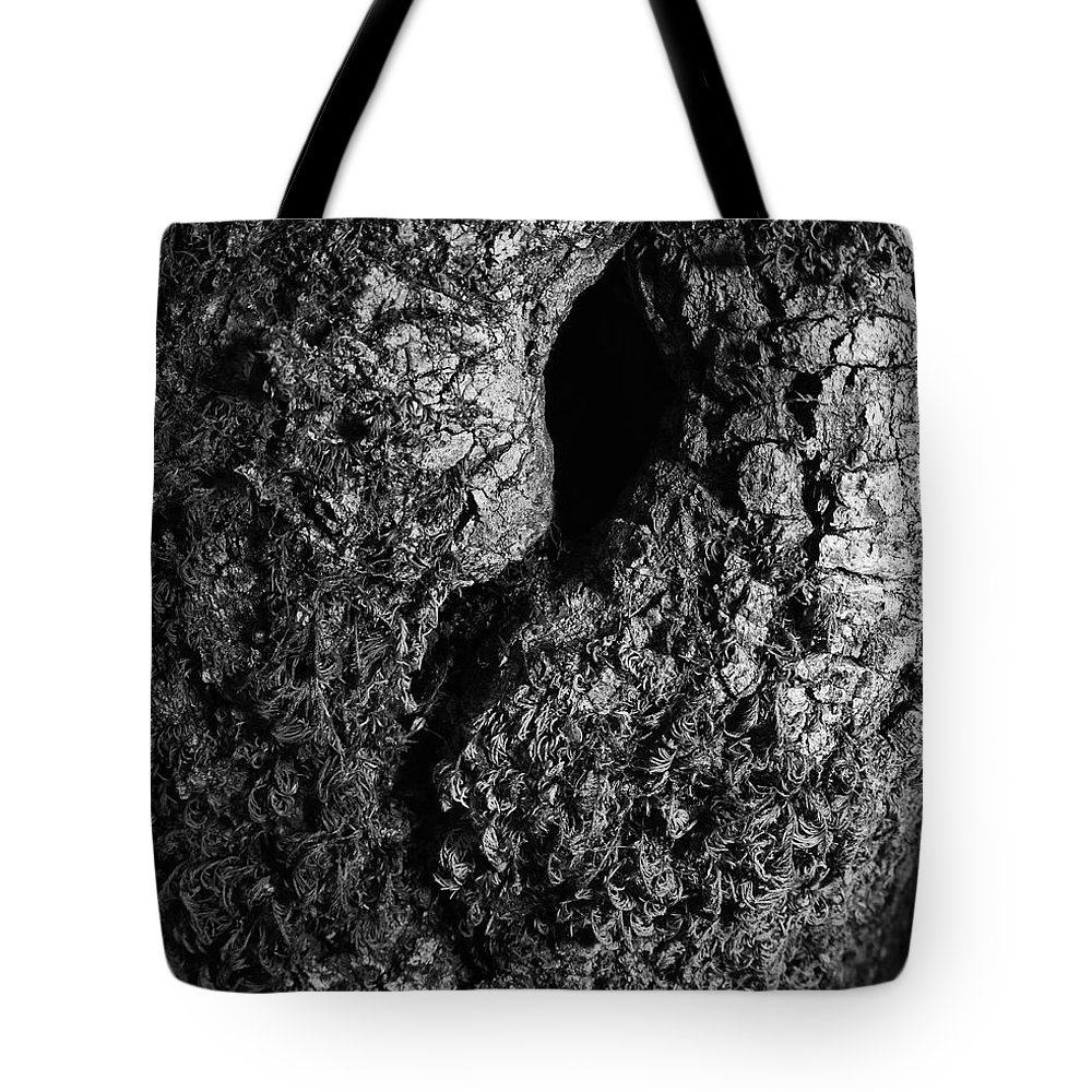 Tote Bag featuring the photograph The Old Knot by Blake Richards