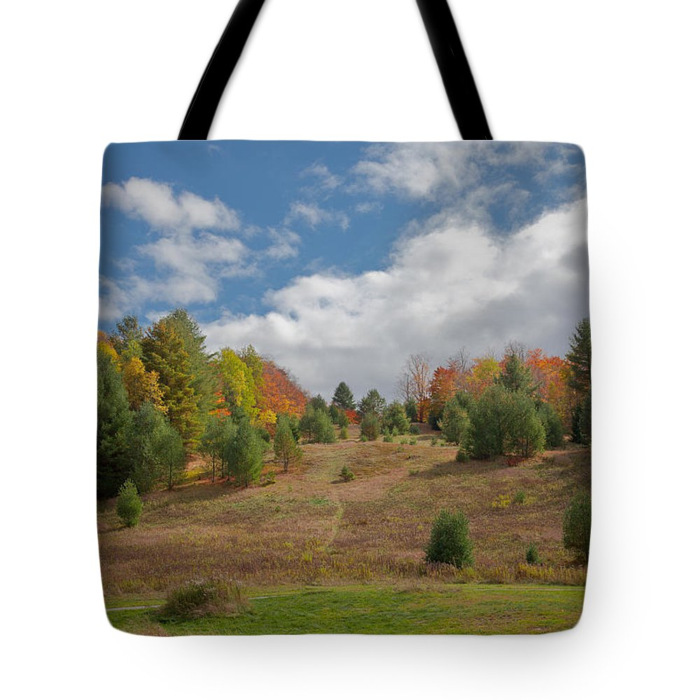 Adirondack's Tote Bag featuring the photograph The Old Maple Ridge Ski Slope by David Patterson