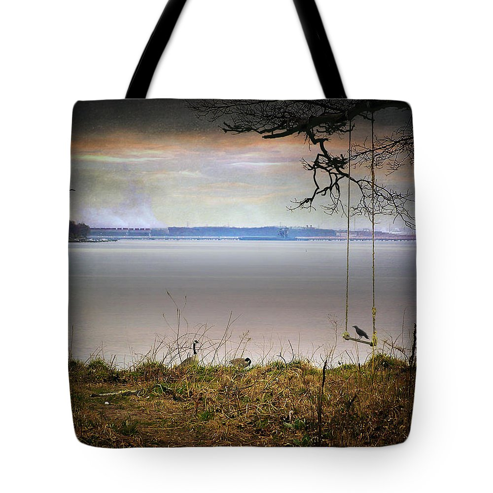 2d Tote Bag featuring the photograph The Old Swing by Brian Wallace