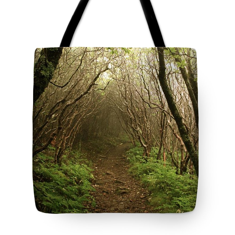 Forest Tote Bag featuring the photograph The One To Me by AR Annahita