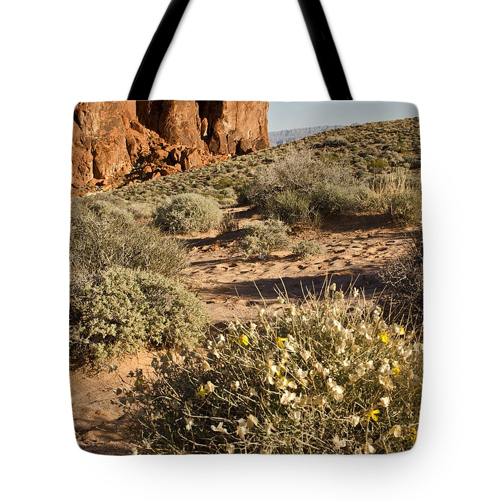 Outcropping Tote Bag featuring the photograph The Outcropping by Mike Nellums