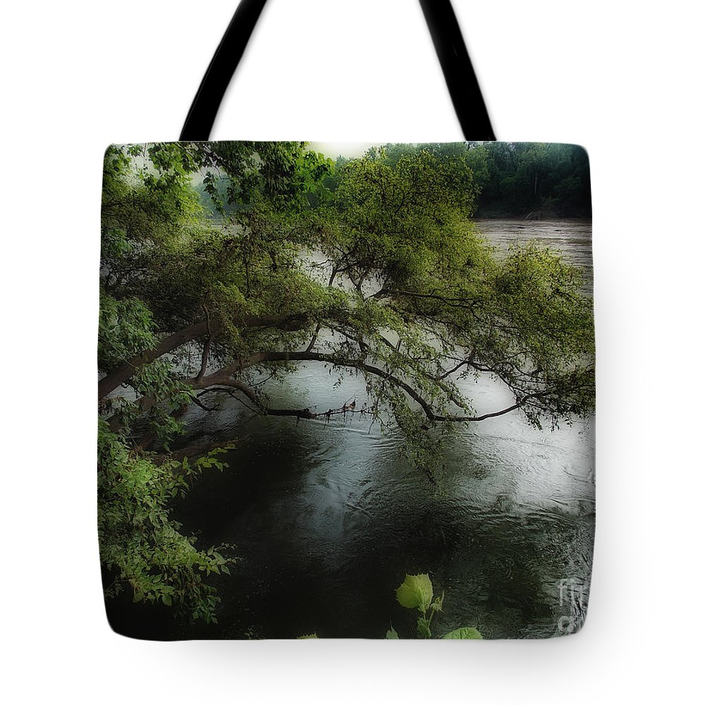 Scenic Tours Tote Bag featuring the photograph The Overhang by Skip Willits