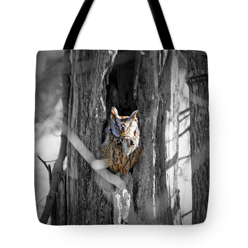 Owl Tote Bag featuring the photograph The Owl by Jost Houk