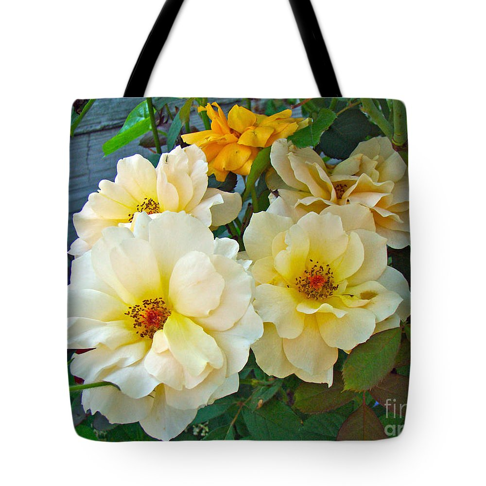 Rose Tote Bag featuring the photograph The Palest Yellow Just Like Lemon Sherbet by Mother Nature