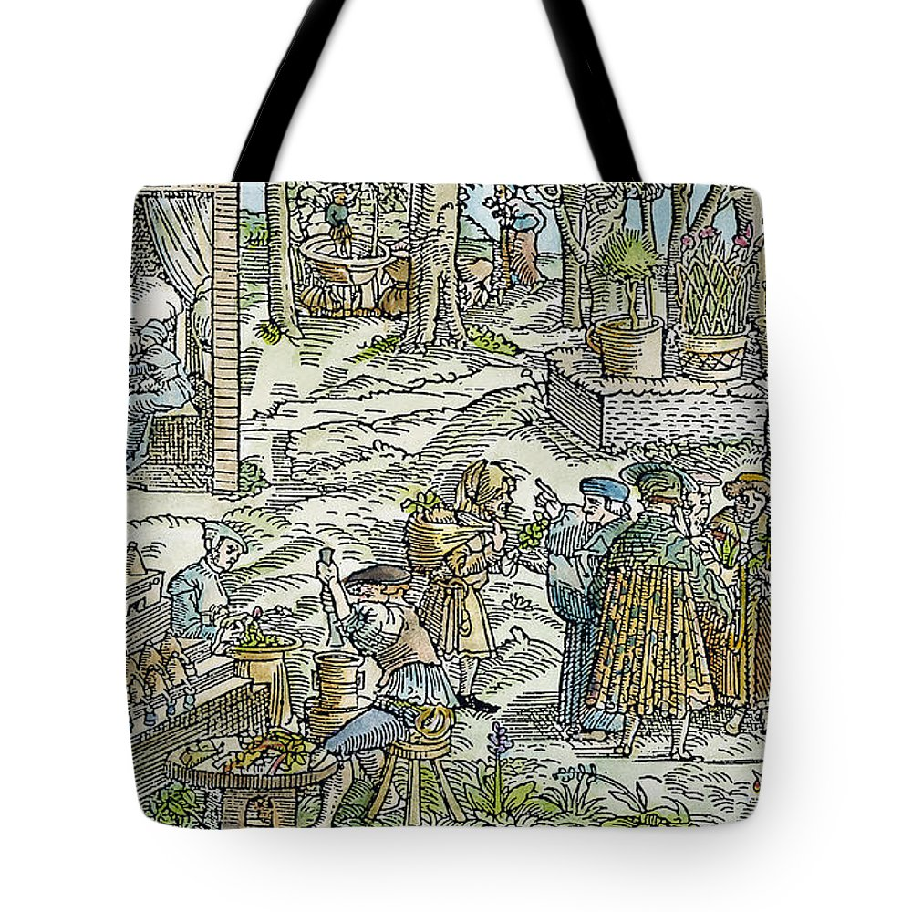 1531 Tote Bag featuring the photograph The Physic Garden, 1531 by Granger