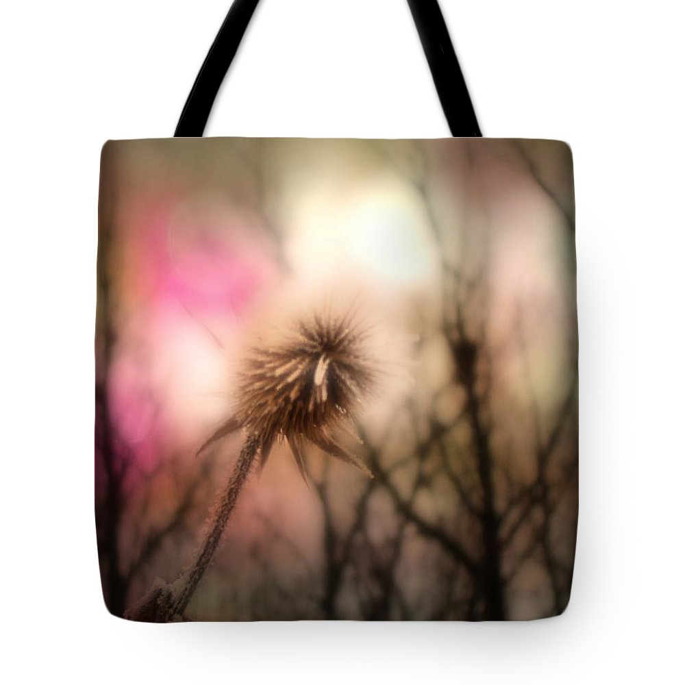 Teasel Tote Bag featuring the photograph The Pink Light by Gothicrow Images