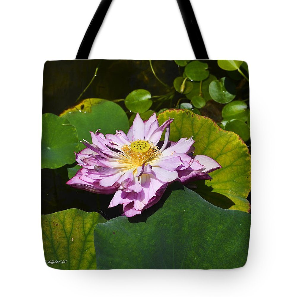 Waterlily Tote Bag featuring the photograph The Really Fancy Bloom by Allen Sheffield