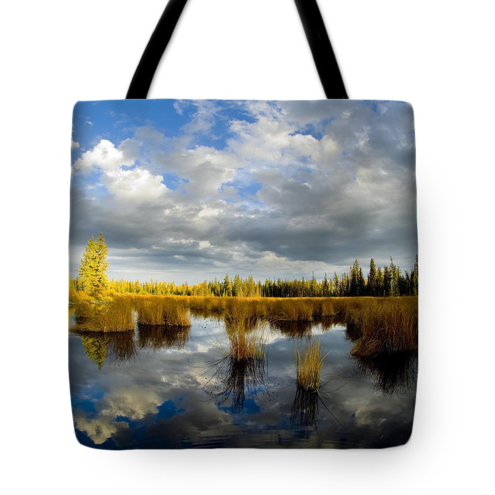 Green Lake Tote Bag featuring the photograph the Reflection by Randy Giesbrecht