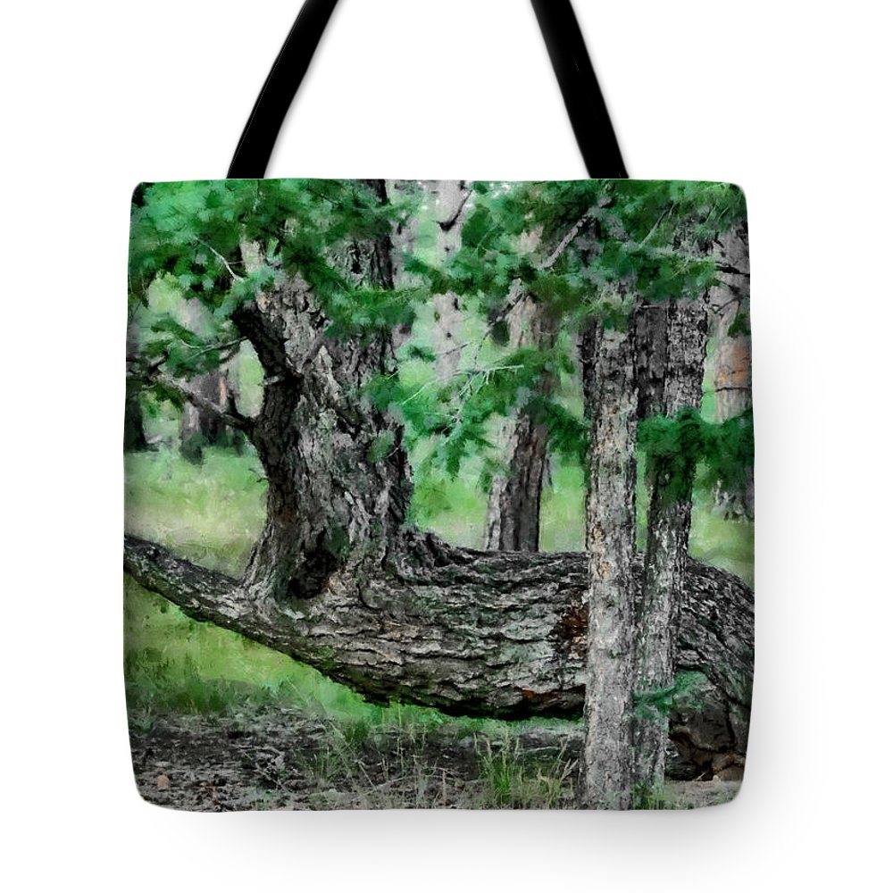 The Resting Place Tote Bag featuring the digital art The Resting Place by Ernie Echols