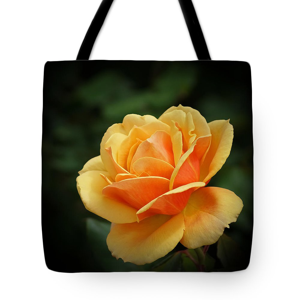 Beautiful Tote Bag featuring the photograph The Rose 1 by Ernie Echols