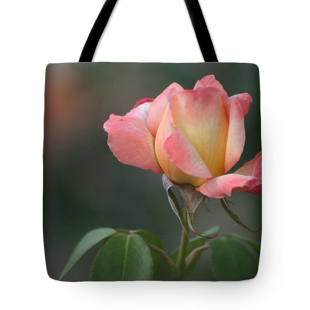 Rose Tote Bag featuring the photograph The Rose by Living Color Photography Lorraine Lynch