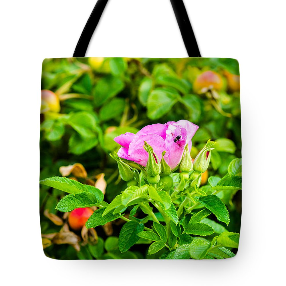 Abstract Tote Bag featuring the photograph The Season Of Ripening - Featured 3 by Alexander Senin