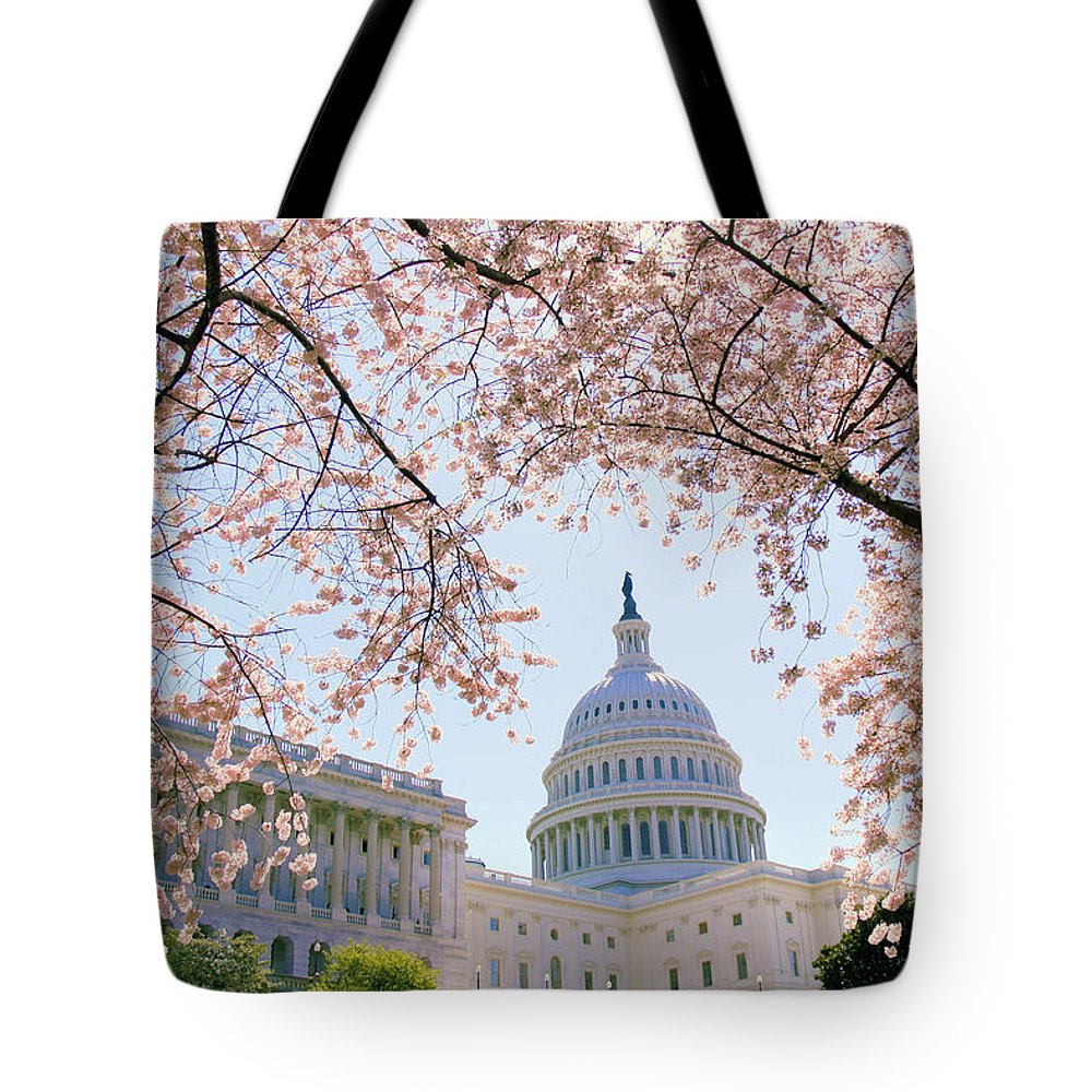 Spring Tote Bag featuring the photograph The Seasonal Experience by Mitch Cat