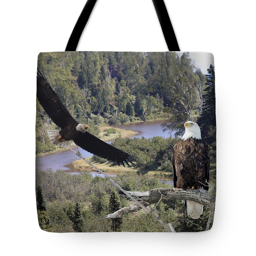 Eagle Tote Bag featuring the photograph The Silent Watch by Lori Tordsen