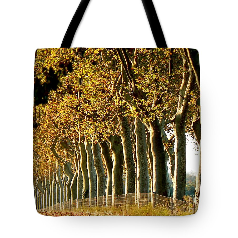 Fall Tote Bag featuring the photograph The Sisters by France Art