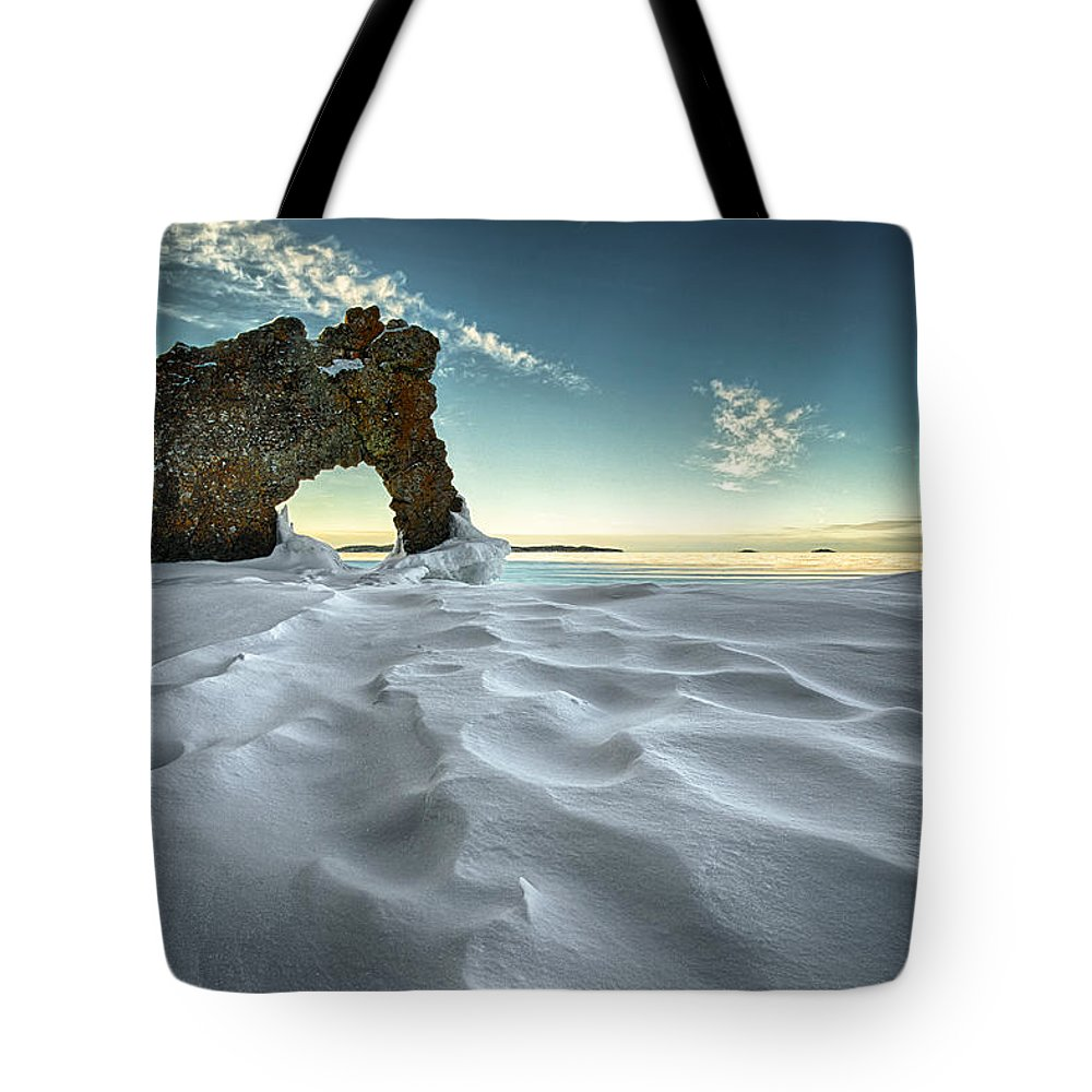 Bay Tote Bag featuring the photograph The Sleeping Giants Sea Lion by Jakub Sisak
