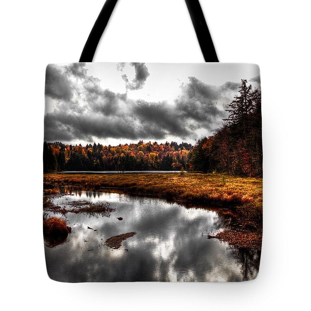 Adirondack's Tote Bag featuring the photograph The South End Of Cary Lake by David Patterson