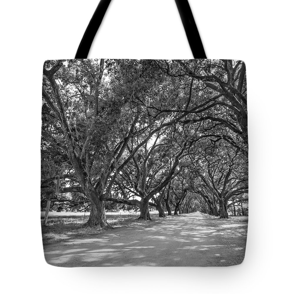 Evergreen Plantation Tote Bag featuring the photograph The Southern Way Bw by Steve Harrington