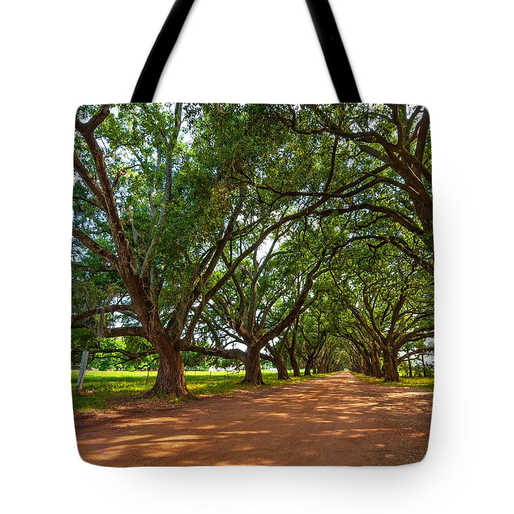 Evergreen Plantation Tote Bag featuring the photograph The Southern Way by Steve Harrington