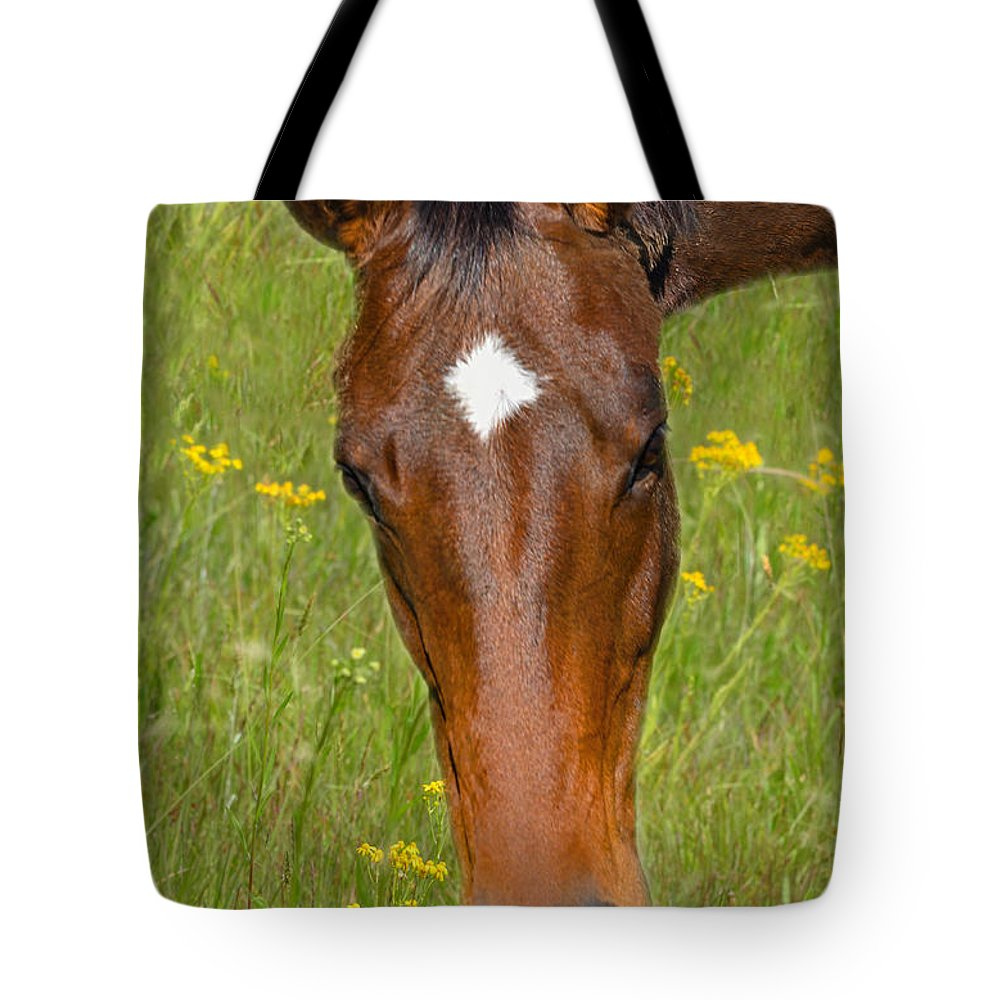 Horse Tote Bag featuring the photograph The Star by Sandi OReilly