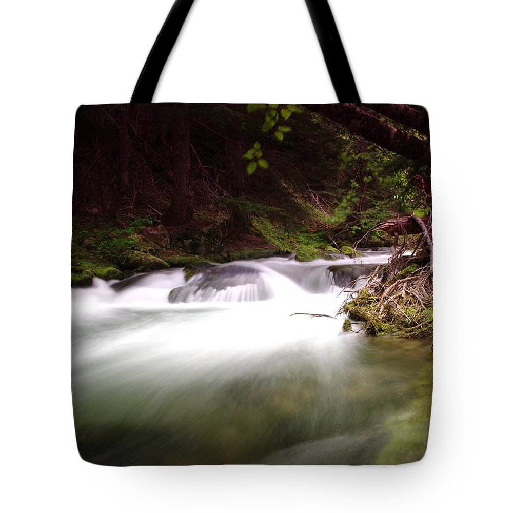 Tananamawas River. Oregon Tote Bag featuring the photograph The Tananamawas River by Jeff Swan