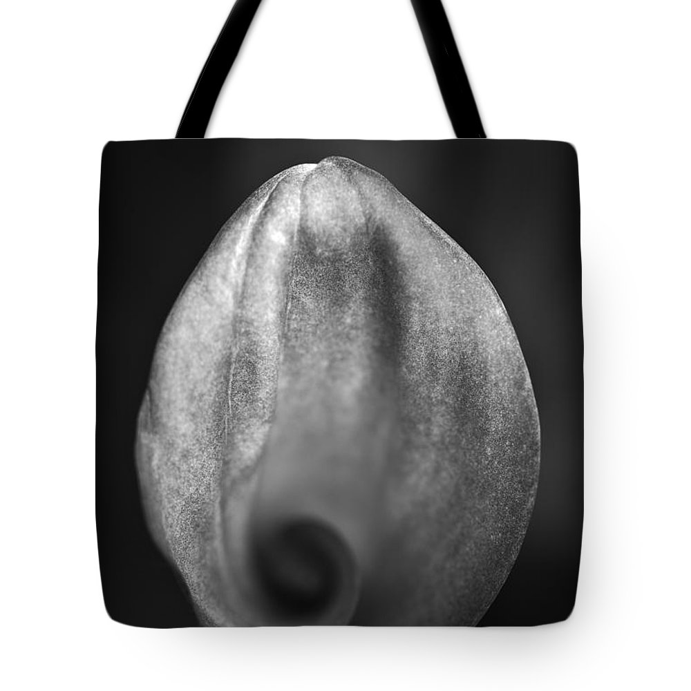 Blumwurks Tote Bag featuring the photograph The Tempestuous Calm by Matthew Blum
