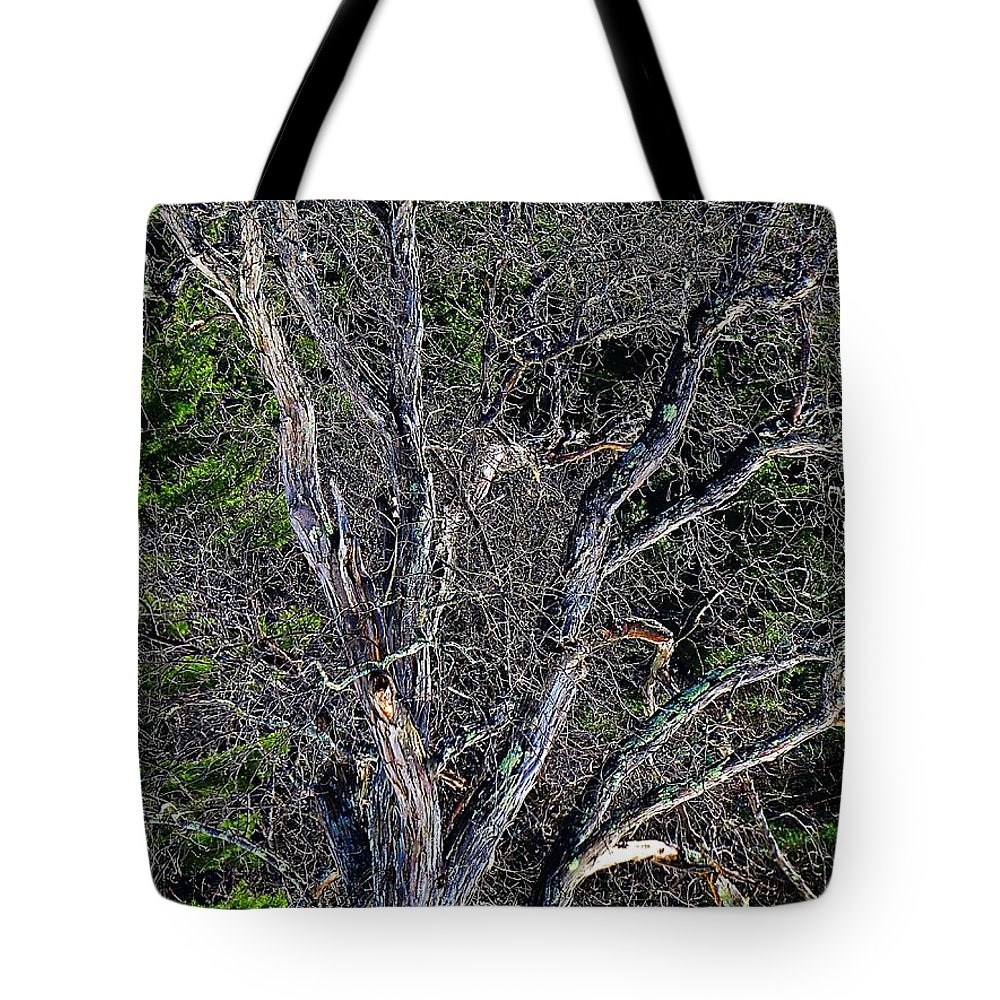 Tote Bag featuring the photograph The Tree by MTBobbins Photography