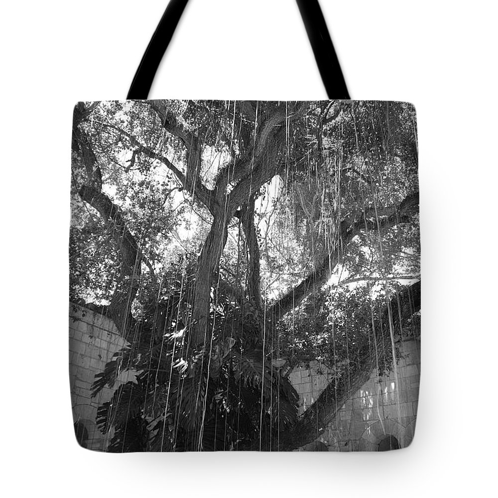 Black And White Tote Bag featuring the photograph The Tree Vines by Rob Hans