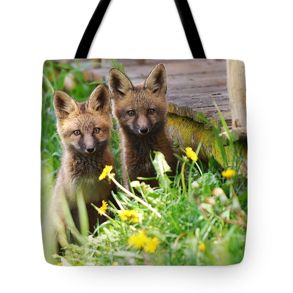 Animal#1 Tote Bag featuring the photograph The Twins by Randy Giesbrecht