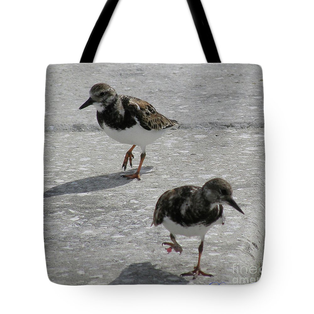 Birds Tote Bag featuring the photograph The Walk by Donna Brown