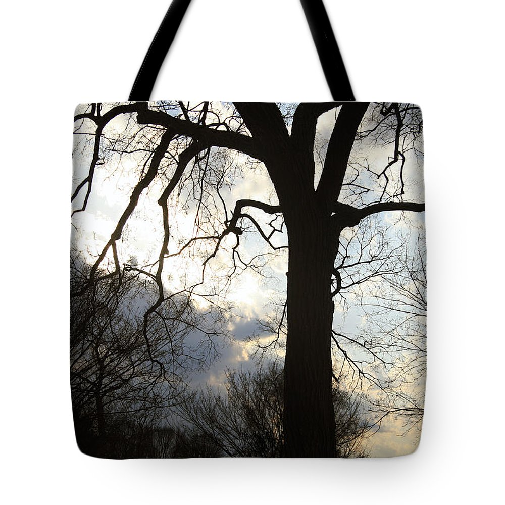 Washington Tote Bag featuring the photograph The Washington Monument Lost In The Trees by Cora Wandel