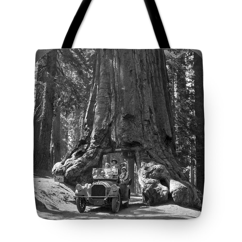 1915 Tote Bag featuring the photograph The Wawona Giant Sequoia Tree by Underwood Archives