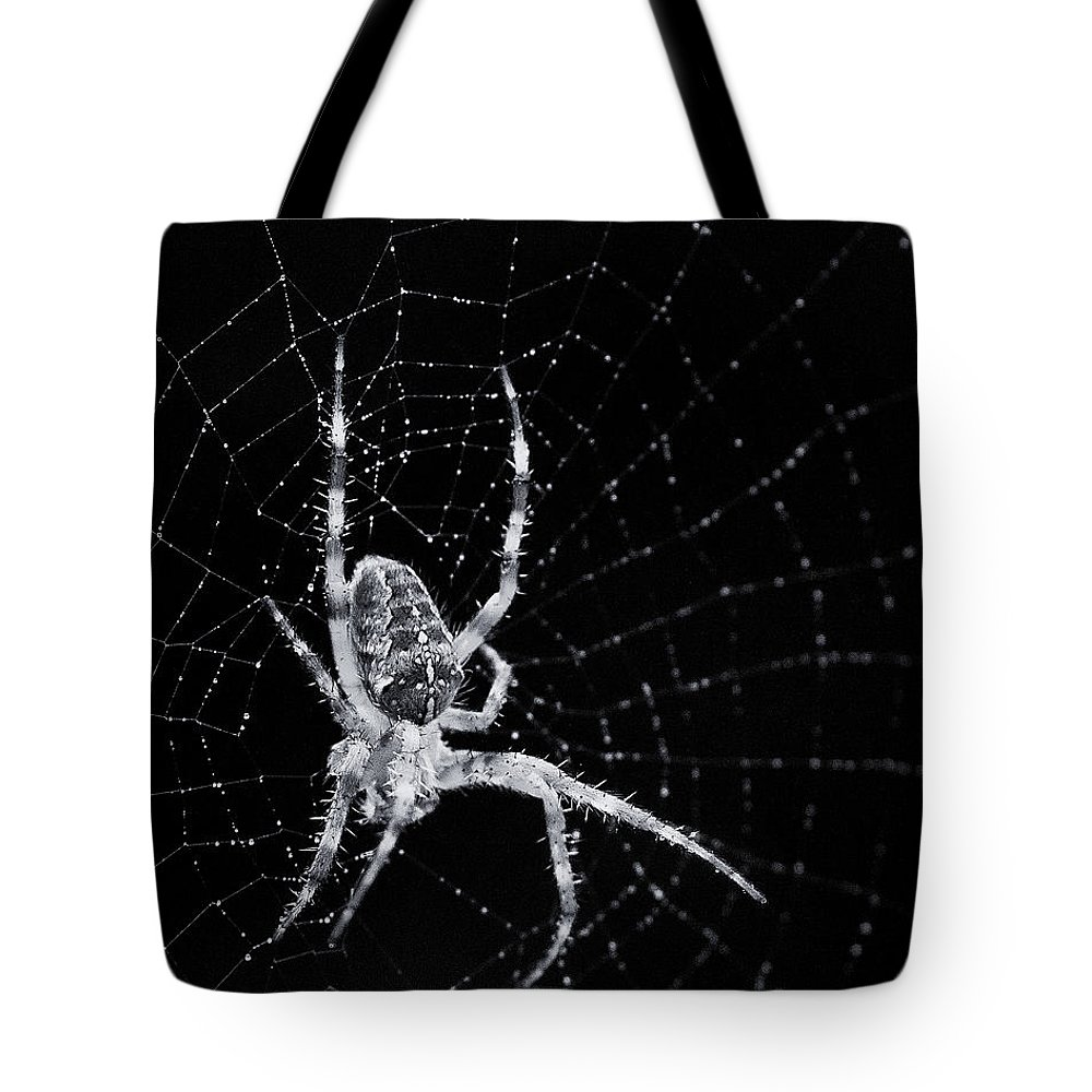 Spider Tote Bag featuring the photograph The Web by Bob Stevens