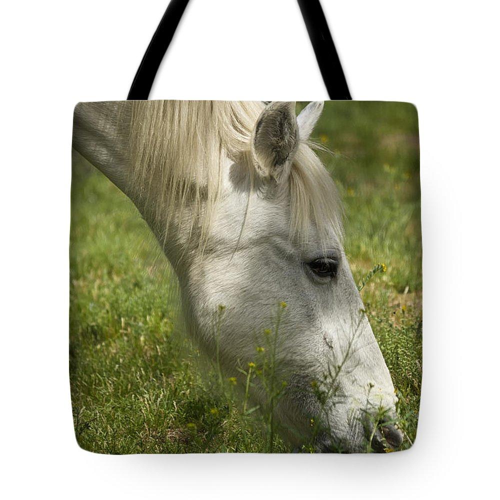 Wild Horse Tote Bag featuring the photograph The White Mare by Saija Lehtonen
