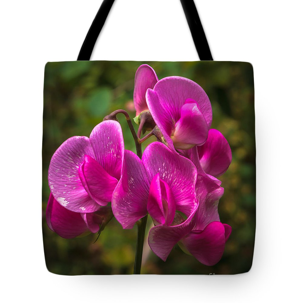 Lathyrus Odoratus Tote Bag featuring the photograph The Wild One by Robert Bales