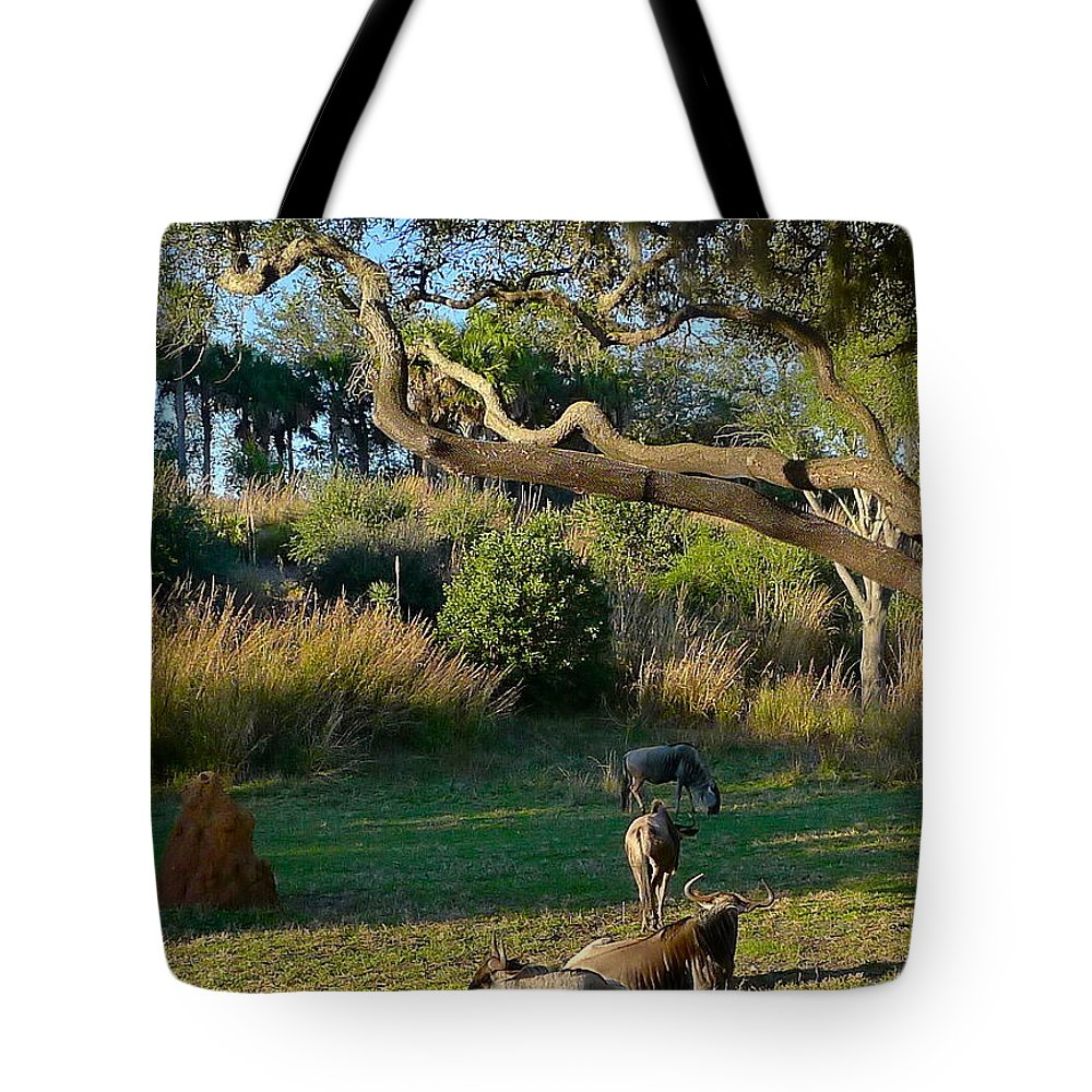 Animal Tote Bag featuring the photograph The Wildebeest by Denise Mazzocco
