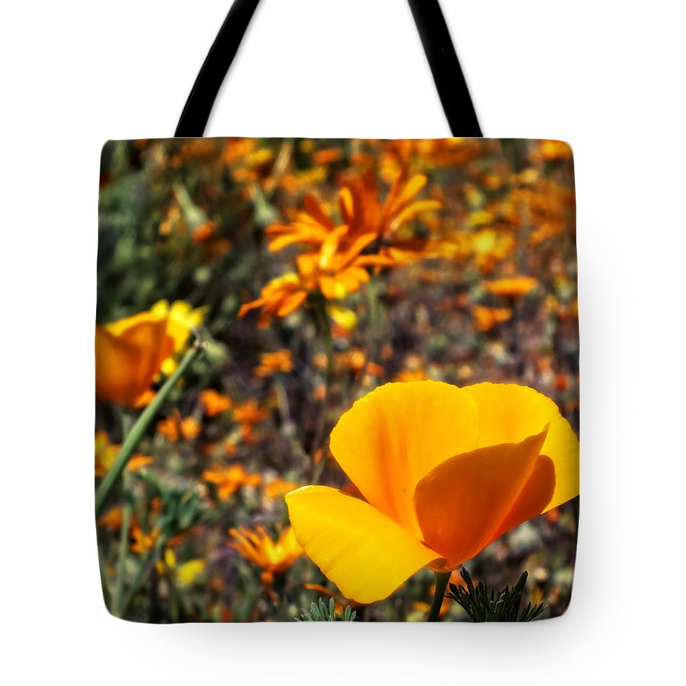 Desert Southwest Tote Bag featuring the photograph The Wildflowers Are Here And Spring Has Arrived by Lucinda Walter