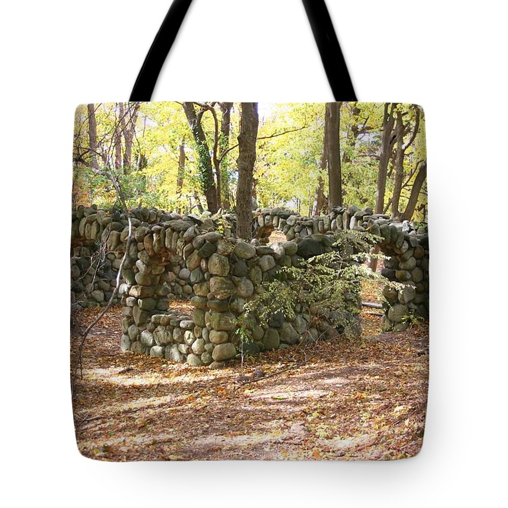 Landscape Tote Bag featuring the photograph Theatre Square by Karen Silvestri