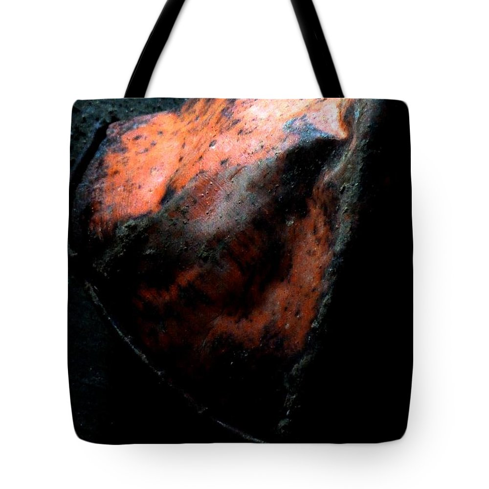 Newel Hunter Tote Bag featuring the photograph There For You by Newel Hunter