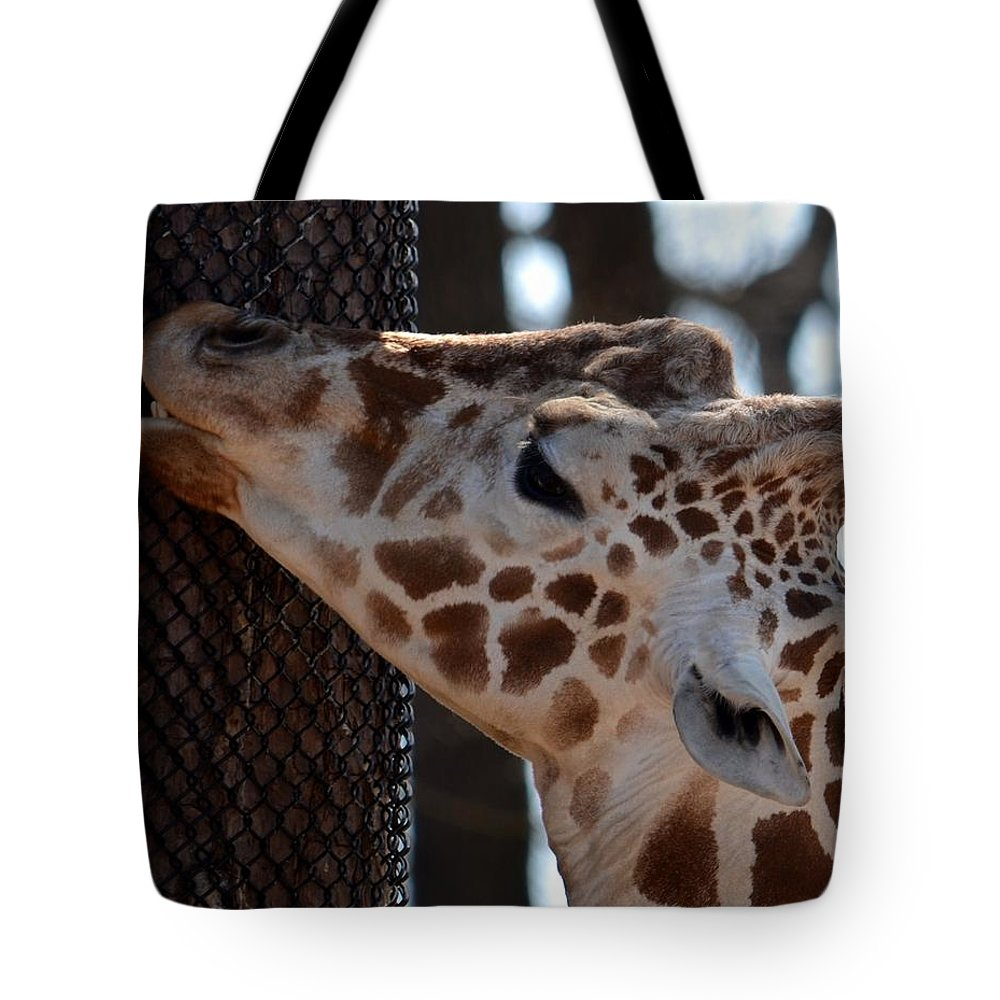 Thinking Africa Tote Bag featuring the photograph Thinking Africa by Maria Urso