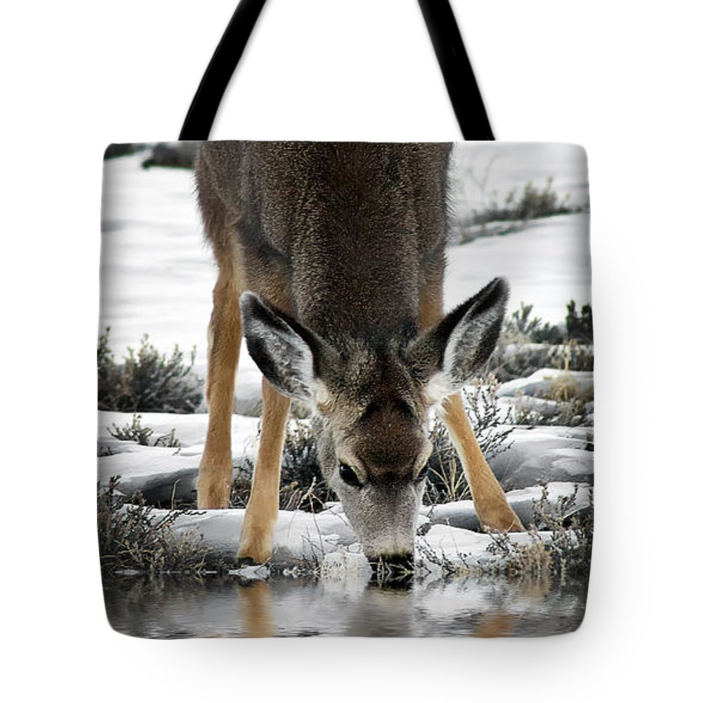 Thirst Quenching Deer Tote Bag featuring the photograph Thirst Quenching Deer by Priscilla Burgers