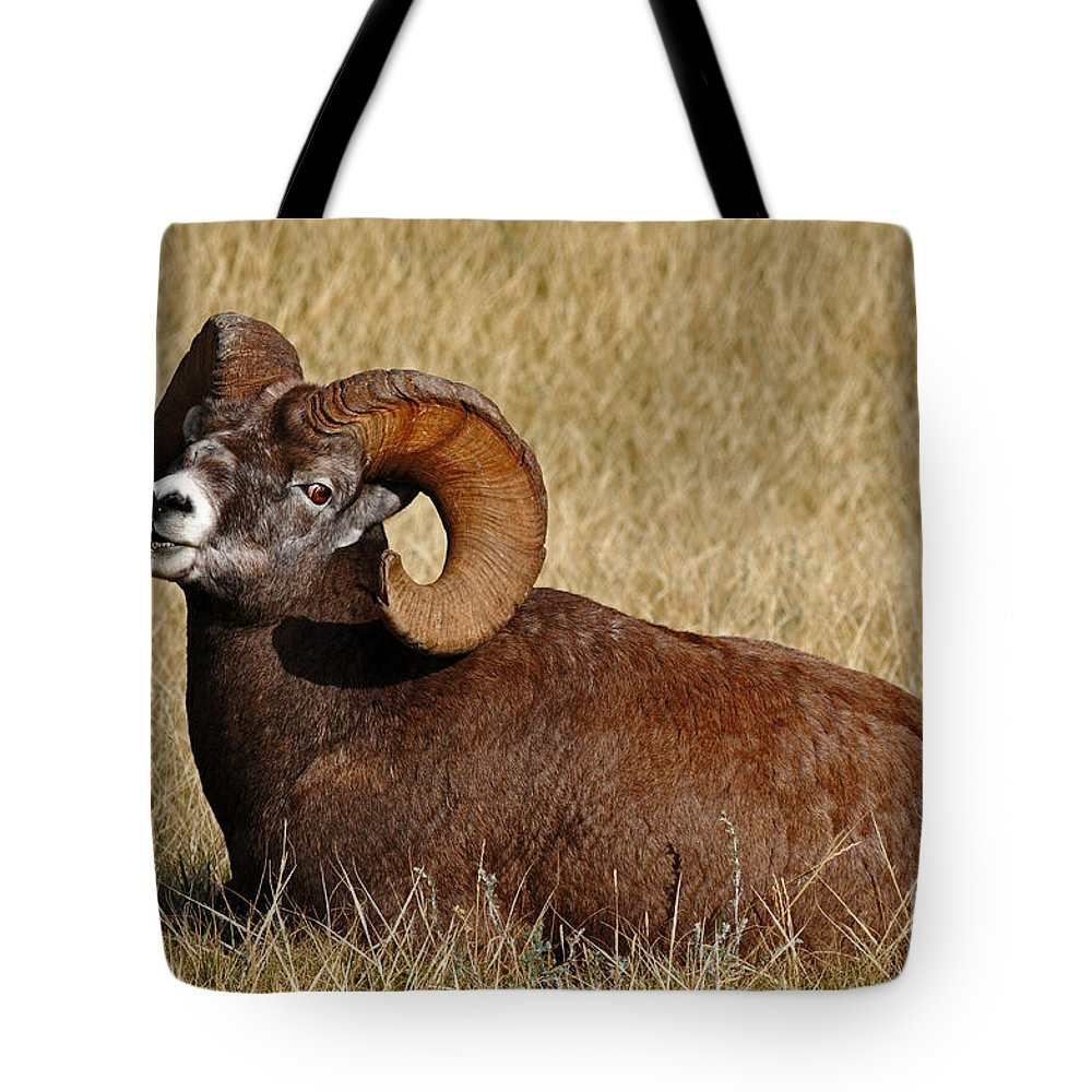Wildlife Tote Bag featuring the photograph This Is My Space by Vivian Christopher