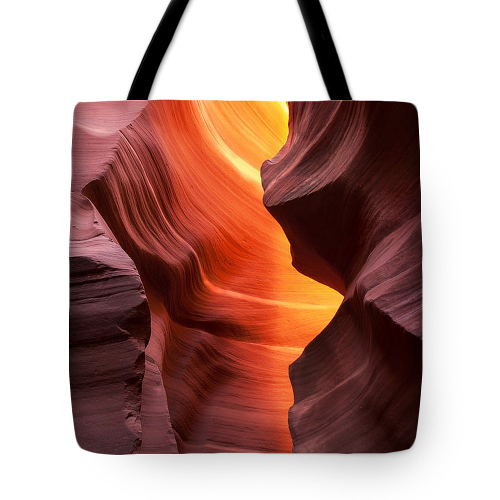 Antelope Tote Bag featuring the photograph This Is The Moment by Angela King-Jones