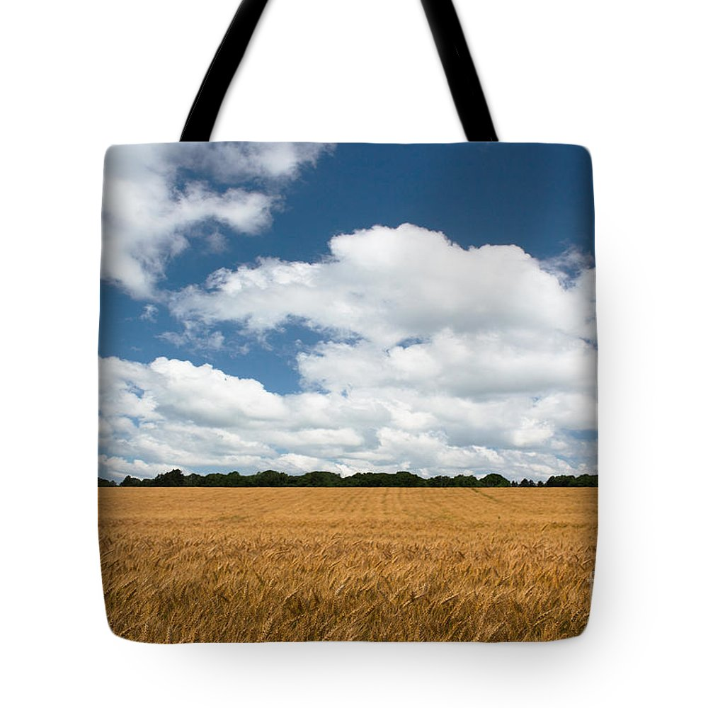 Farm Tote Bag featuring the photograph Thoughts Of A Wheatfield by Barbara McMahon