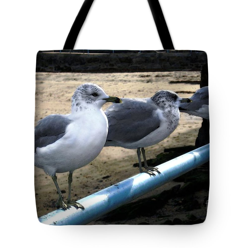 Seabirds Tote Bag featuring the digital art Three Amigos by Dale  Ford