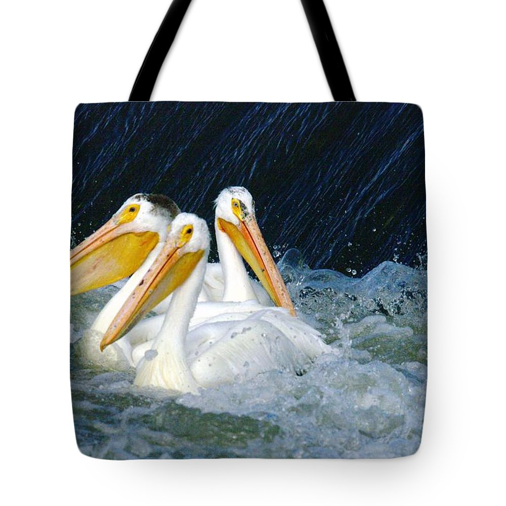 Pelicans Tote Bag featuring the photograph Three Buddies Hanging Out by Jeff Swan