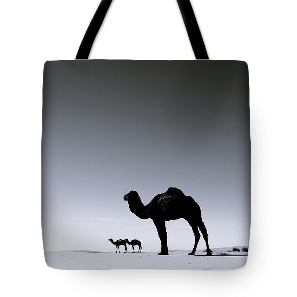 Scenics Tote Bag featuring the photograph Three Camels In The Sahara Desert by Zodebala